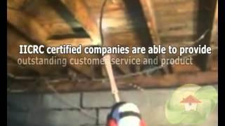 Working With IICRC Companies