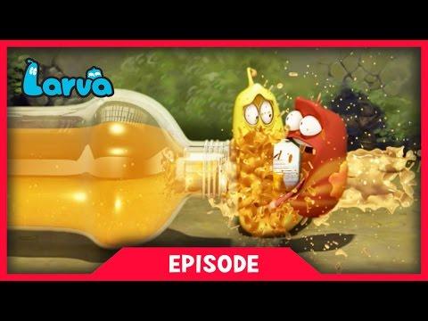 LARVA - ORANGE SODA   2017 Cartoon Movie   Cartoons For Children   라바   LARVA Official