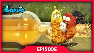 LARVA - ORANGE SODA | 2017 Cartoon Movie | Cartoons For Children | 라바 | LARVA Official