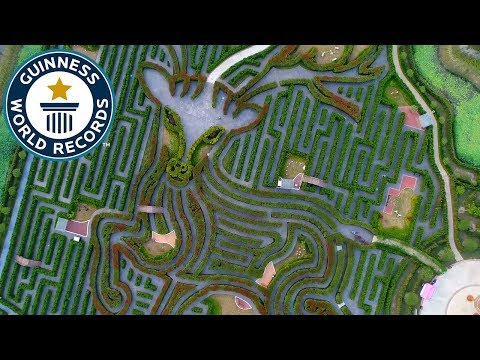 Largest hedge maze – Guinness World Records