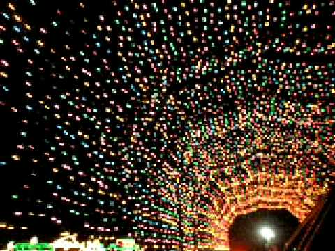 Christmas lights at Hartwood Acres. - YouTube