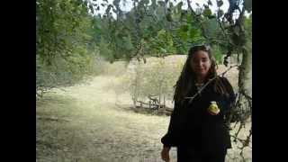 Popular Videos - Sonoma & Sonoma State Historic Park