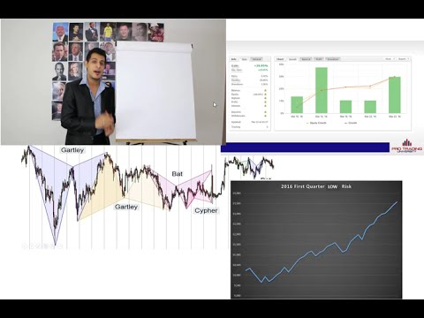 FOREX TRADING: The 5 Simple Steps To Become A Professional Trader! - I Will Take It Down Soon!