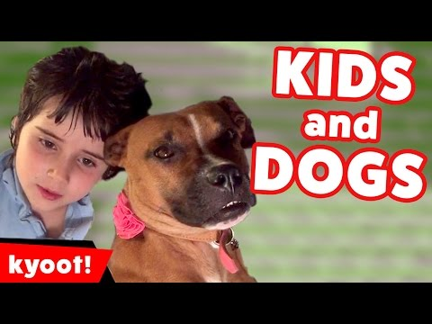 The Cutest Kids Meet The Funniest Dogs Home Videos of 2016 Weekly Compilation   Kyoot Animals