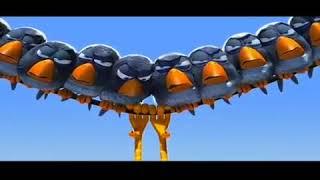 Lustige Vögel Auf Stromleitung