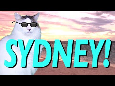 Happy Birthday Sydney Epic Cat Happy Birthday Song