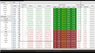 Using the Segreto Spreadsheet