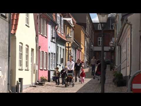 Tilflytter i Guldborgsund Kommune