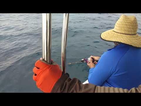 Sattahip fishing club