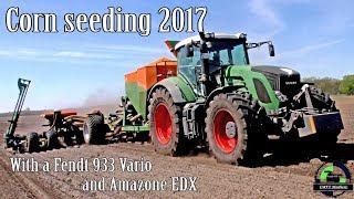 Mais legen im Frühjahr mit einem Fendt 933 Vario und Amazone EDX 9000 T
