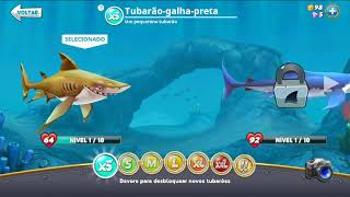 apk mod de Hungry Shark World (MOD, muito dinheiro) 3.0.2.apk