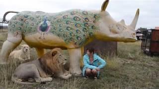 Фото с ВОЖАКОМ под носорогом !