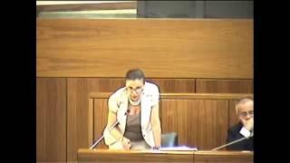 Claudia Zuncheddu su stabilizzazione precari della PA e collegato alla finanziaria 2011-2013