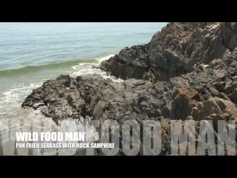 Pan fried Sea Bass, Rock samphire & Sea beet