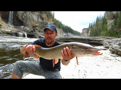 Pike and walleye fishing troutriver NWT