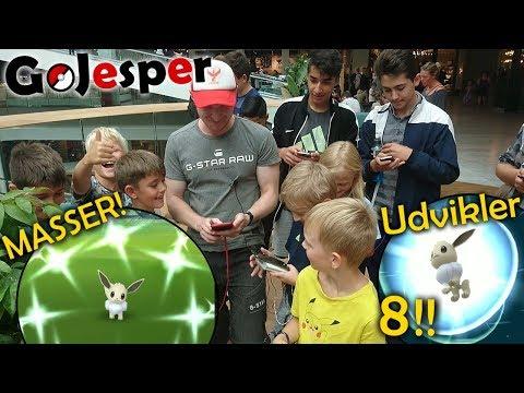 MASSER Shiny Eevee til Community Day!! Udvikler 8!! (Dansk Pokémon GO) thumbnail