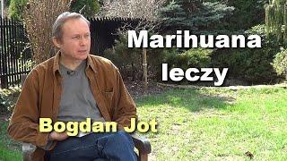 Marihuana leczy - Bogdan Jot