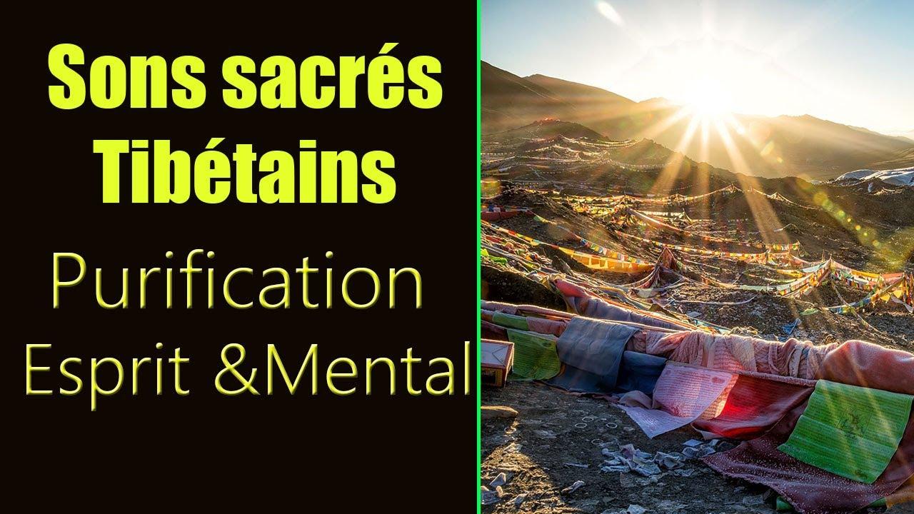 Sons sacrés Tibétains pour méditation profonde et guérison. Purifie  fortement l'esprit et le mental - YouTube