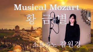 뮤지컬 '모차르트' - 황금별. Musical Moza…