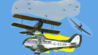 De Havilland Tiger Moth rally at Woburn Abbey, including Dragon Rapides & stags - 16th August 2015