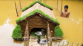 Building Mini House For Ducks In The Pond, How To Build Ducks House