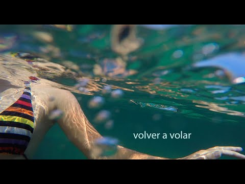 Volver a volar. #video1