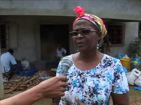 Reportage PME   Agrimat Gabon