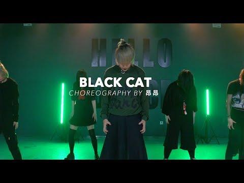 Black Cat / ALGGER Choreo - HELLO DANCE