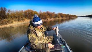 СУДАК и его друг ОКУНЬ СЛОМАЛ спиннинг Рыбалка на реке