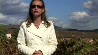 GlobeTrotter TV Explore Beaujolais in France