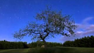 Скачать Ночные города под красивую музыку Lumen Гореть