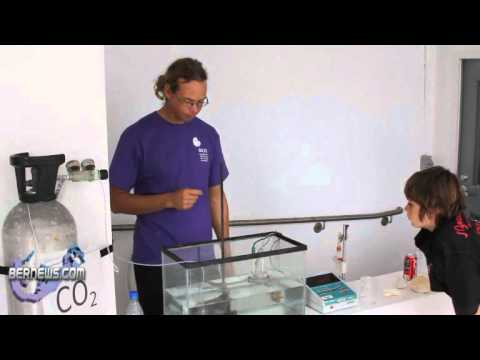 BIOS Water Acidity Research