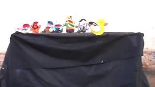 O Pato - Vinicius de Moraes