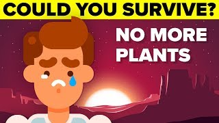 How Long Can You Survive If All The Plants In The World Die?