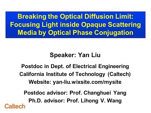Focusing light inside opaque scattering media by optical phase conjugation