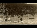 "History/Yellowstone ""A Realm Untamed"""