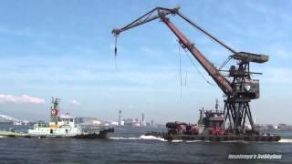 転けそうで見ていてヒヤヒヤしました。Tugboat.