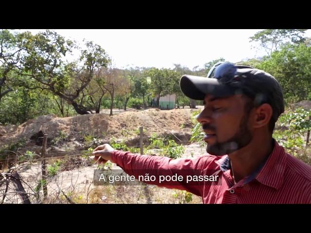 Estrondo: a força do agronegócio no oeste da Bahia