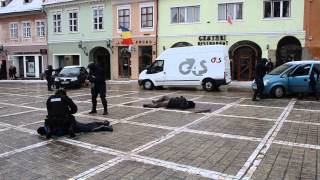 Parada Militara Brasov.demonstratie Jandarmeria Brasov transilvania365.ro