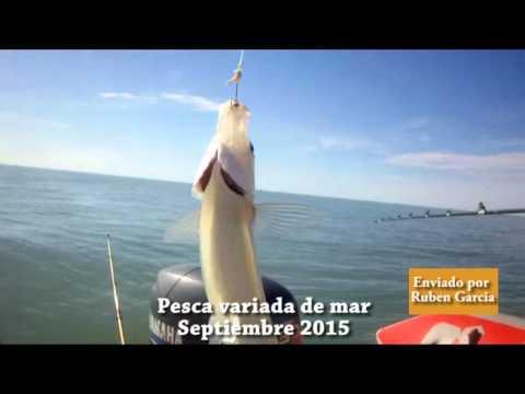 La Ruta del Pescador 10/9/15 bloque 2 Marisol embarcados