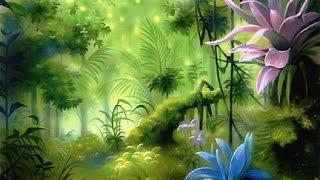 Ботаника – наука о растениях