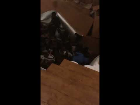 Reece - Floor Collapses at South Carolina Party
