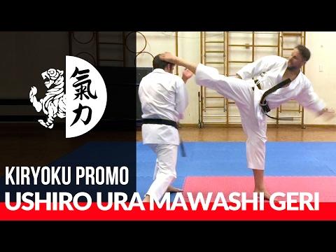 Paul Herbert (Shotokan) - Ushiro Ura Mawashi Geri