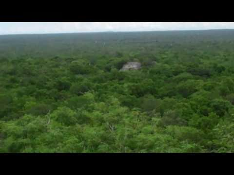 Calakmul Mayan Ruins  Campeche State, Mexico