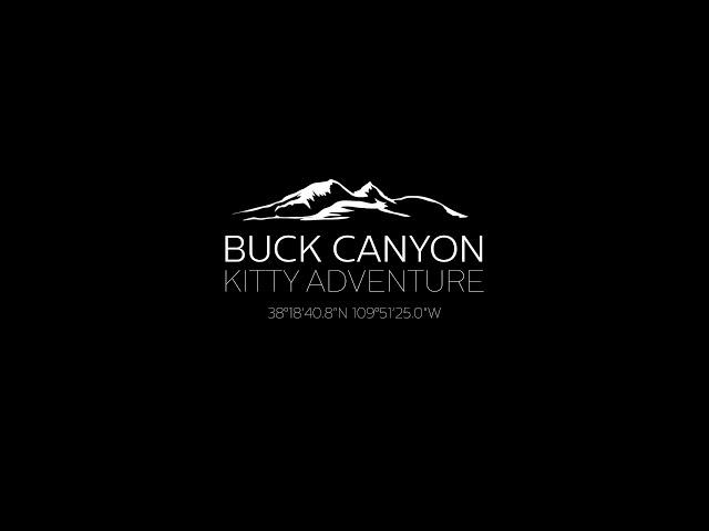 Buck Canyon Kitty Adventure