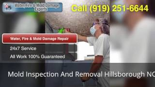 Mold Inspection And Removal Hillsborough NC (919) 251-6644