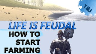 Life is Feudal - How to start farming