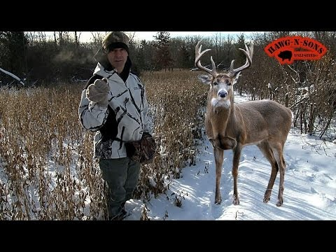Pics For > Monster Whitetail Bucks In Snow