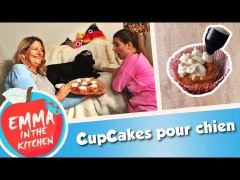 cupcakes-pour-chien-🐶