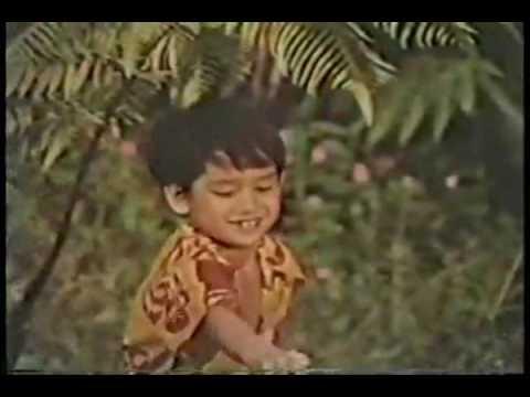 "C&H Sugar Commercial ""Island"" 1974"